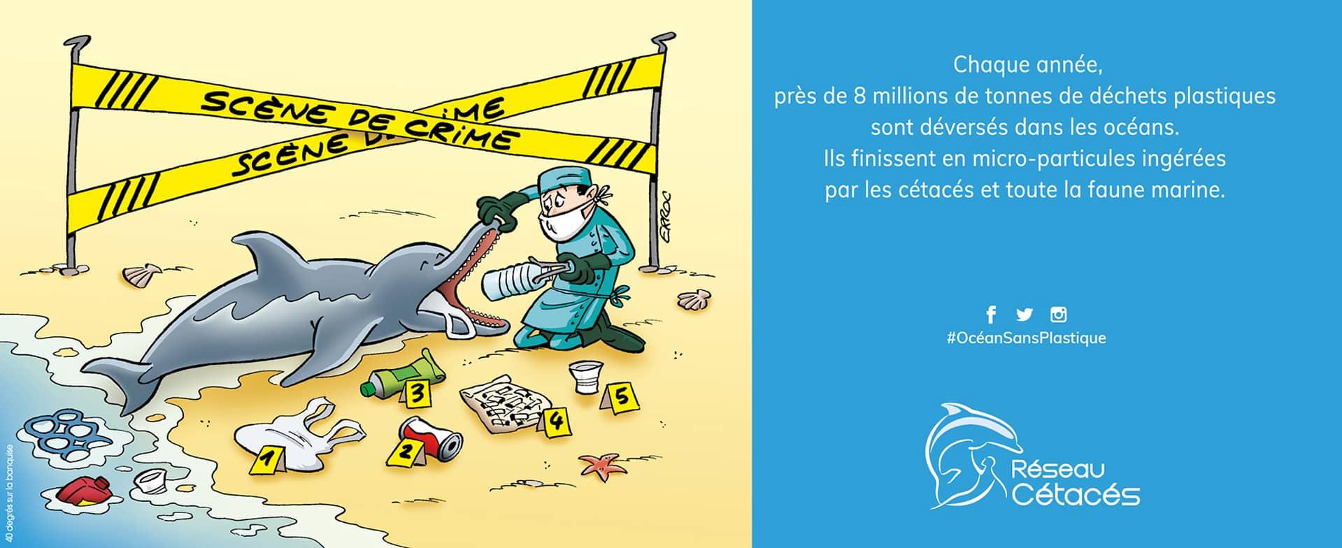 Campagne Publicitaire pour Réseau Cétacés