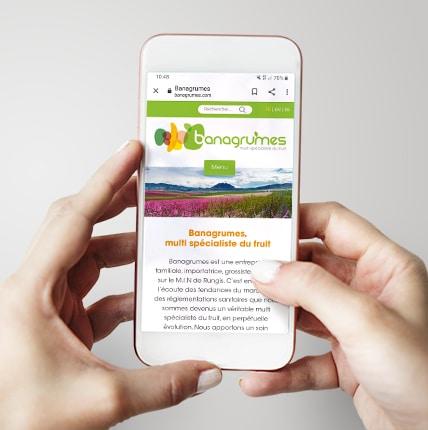 Banagrumes site responsive