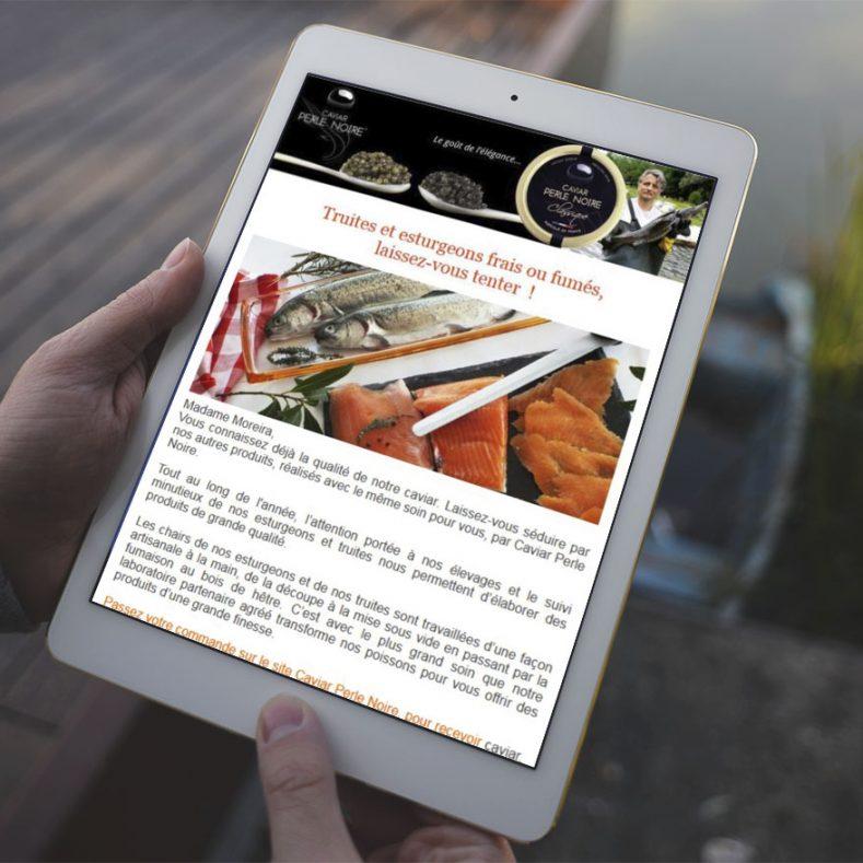 Création Newsletter pour Caviar Perle Noire